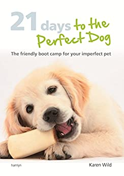 Dog Friendly Boot Camp
