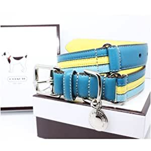 """COACH Striped Multicolor Leather Collar with Engraveable Charm 60407 Limited Edition - Turquoise/Yellow, Small (11""""-13"""")"""
