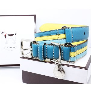 "COACH Striped Multicolor Leather Collar with Engraveable Charm 60407 Limited Edition - Turquoise/Yellow, Small (11""-13"")"