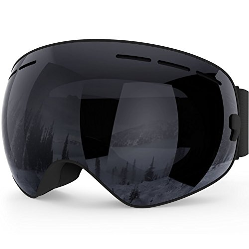 Fans ski glasses goggles, winter double skis mirror sports anti-fog protective glasses anti-fog protection interchangeable spherical dual lens men's, snowmobile skiing outdoor sports skiing mirror (Dragon Dirt Bike Google Lens)