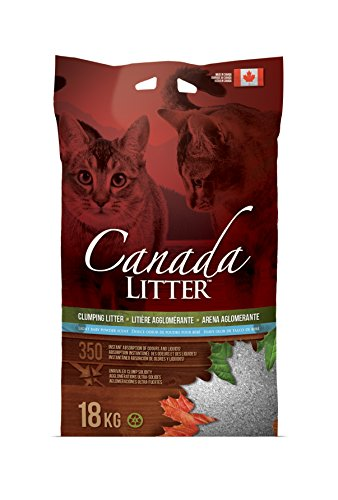 Canada Litter Clumping Cat Litter Baby Powder Scent 18 KG (40-Pounds)