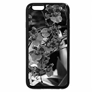iPhone 6S Case, iPhone 6 Case (Black & White) - Beauty of flowers in Spring 36
