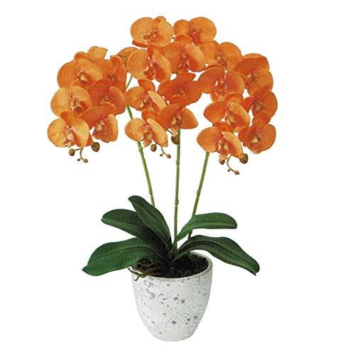 人工観葉植物 ピュアオーキッド3本立(フローラファレノ)オレンジ 光触媒加工 高さ50cm zv8080 (代引き不可) インテリアグリーン 造花 B07SXF6PBB
