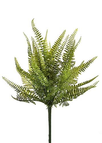 Floral Home Plastic Outdoor Ladder Fern Plant - 18