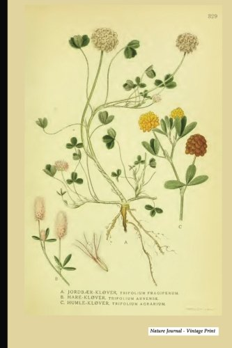 Nature Journal - Vintage Print: Vintage Nature Print (27), 6