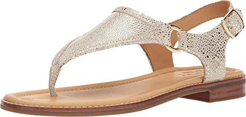 Sperry Top-Sider Abbey Sandal Women 6.5 Platinum ()