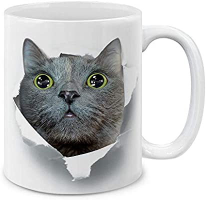 Mugbrew Big Eyes Curious Gray Cat Ceramic Coffee Mug Tea Cup 11 Oz Buy Online At Best Price In Ksa Souq Is Now Amazon Sa