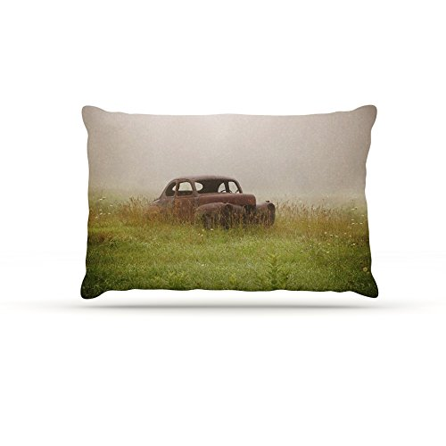 Kess InHouse Angie Turner ''Forgotten Car'' Grass Dog Bed, 30 by 40-Inch by Kess InHouse