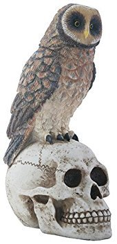 Big Brown Owl on Skeleton Skull Halloween Decorative Statue -