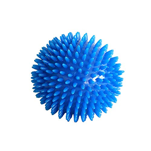 Euone  Pet Toy Clearance , Dog Toy for Large Dog with Convex Design Bone Shape Dog Tug Interactive Chew Toy (Blue)