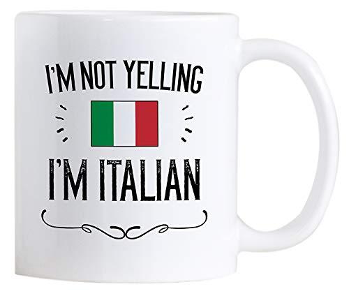 an Pride Coffee Mugs. 11 oz Ceramic Italy Flag Novelty Mug. I'm Not Yelling I'm Italian. ()