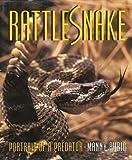 img - for Manny Rubio: Rattlesnake : Rattlesnake (Hardcover); 1998 Edition book / textbook / text book