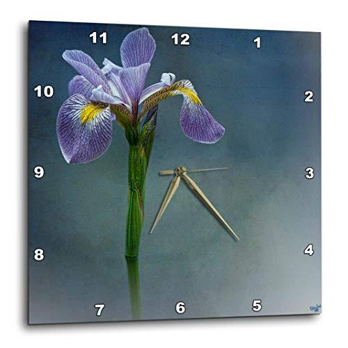 Iris Mist - 3dRose Iris Mist Blue Floral Flower - Wall Clock, 10 by 10-Inch (DPP_55962_1)