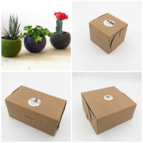 Hanging planter/Macrame plant hanger/Beige Felt planter/air plant vase/modern home decor/CHOOSE YOUR COLOR 4