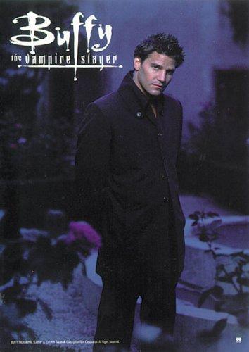 Buffy The Vampire Slayer - TV Show Poster / Print (Angel / David Boreanaz) (Size: 27