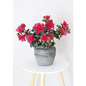 "Floral Home UV Protected Outdoor Artificial Azalea Bush in Fuchsia - 16"" Tall 69"