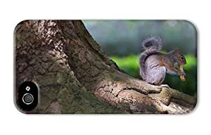 Hipster fun iPhone 4S covers squirrel cute PC 3D for Apple iPhone 4/4S