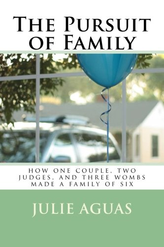The Pursuit of Family: how one couple, two judges, and three wombs made a family of six