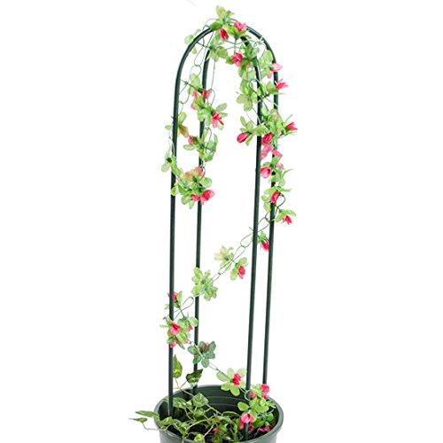 Qianle Plants Support Rack Flower Holder Vines Climbing Stand Garden Supplies - Vine Plant Stand