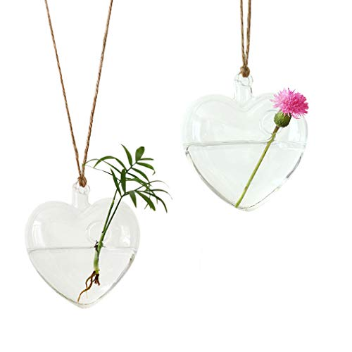 Ivolador 2 Pack Heart-shaped Glass Hanging Flower Planter Vase Terrarium Container Rooter With String Weding Home Garden Decor