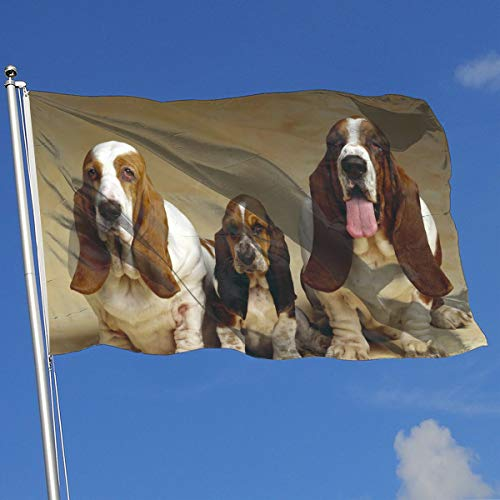 YUANSHAN Home Garden Flag Basset Hound Three Dogs Polyester Flag Indoor/Outdoor Wall Banners Decorative Flag 3' X 5']()