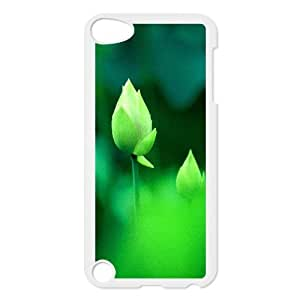 For Iphone 5/5S Phone Case Cover Fresh Green Lotus Bud Macro Bokeh Hard Shell Back White For Iphone 5/5S Phone Case Cover 305329