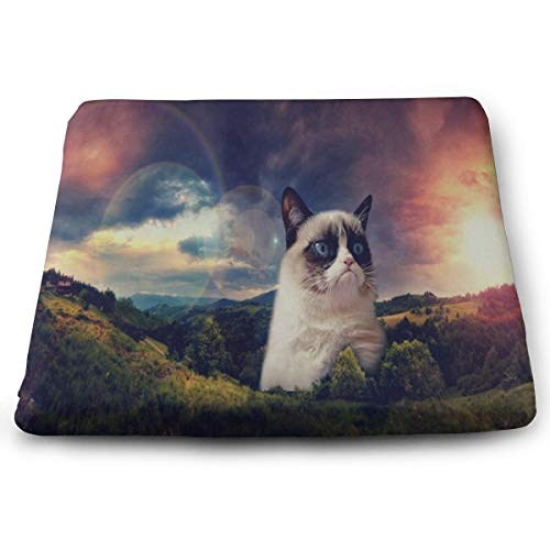 Ladninag Seat Cushion Galaxy Cat in The Moutain Chair Cushion Offices Butt Chair Pads for Cars/Outdoors/Indoor/Kitchens/Wheelchairs ()