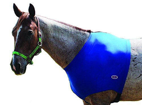 Derby Originals Lycra Horse Shoulder Guard, Blue, Medium