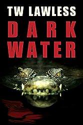 Dark Water (Peter Clancy series Book 4)