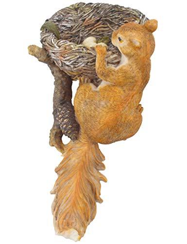 Muse Design Tree Hanging Bird's Nest Squirrel Sculpture Bird Feeder Squirrel Feeder Garden Statues Yard Art Resin Decorations Outdoor Garden -
