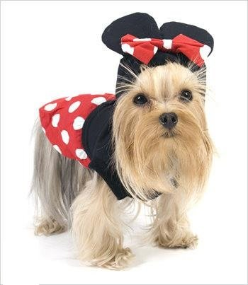 Deluxe Classic Cartoon Mouse Costume For Dogs by Puppe Love (Girl Mouse, Size 5 (14