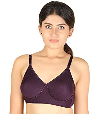 8885d843a4 Tanishqa Juliet Seamless Side Support Bra (Juliet Sangeeta 74 Magenta 32 B)