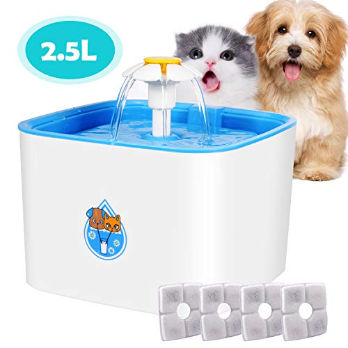 Automatic Flower Pet For Cats And Dogs With Filter Green Spare No Cost At Any Cost Special Section Cat Water Fountain
