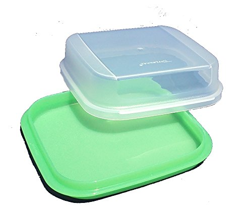 Tupperware Modular Mates Green Square Server with Dome Cover
