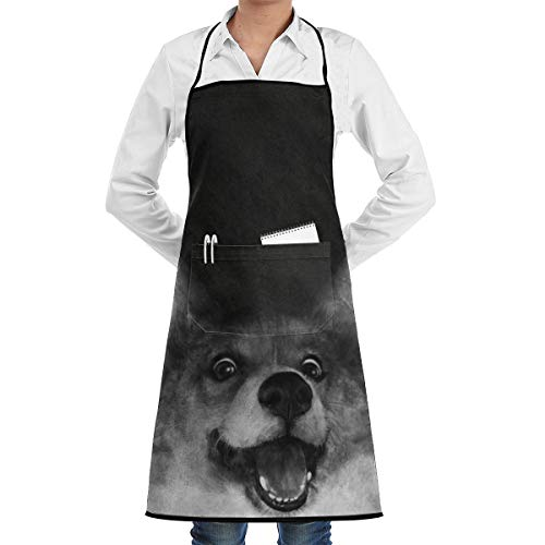 LALACO-Design Sausage Fox Cooking Women Kicthen Bib Aprons with Pockets for Chef,Grandma Suitable for Baking,Grilling,Painting Even Fit for Arts,Holiday]()