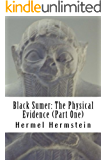 Black Sumer: The Physical Evidence (Part One)