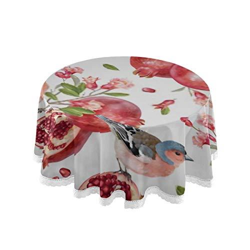 DUKAI Mantel, 60 Pulgadas Redondo Vector patron sin Costuras Aves en Granada Cubierta de Mesa Impresion Mantel Lavable Comedor Decorativo para Vacaciones Casa Fiesta de Navidad Picnic 60 Pulgadas