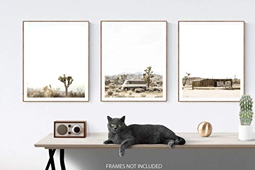 Desert Art Set of 3 unframed photos or canvas,Desert themed Wall art, Boho decor, Minimalist Wall Art