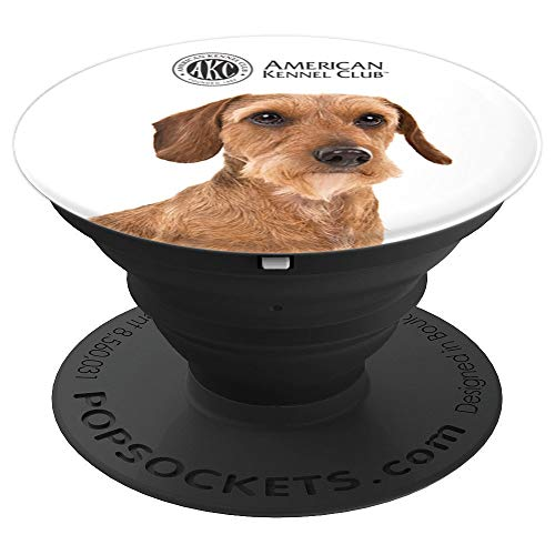 AKC Wirehaired Dachshund Photo PopSocket - PopSockets Grip and Stand for Phones and Tablets