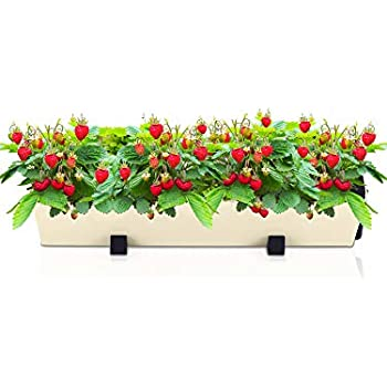 Amazon Com Self Watering Planter For Vertical Gardens