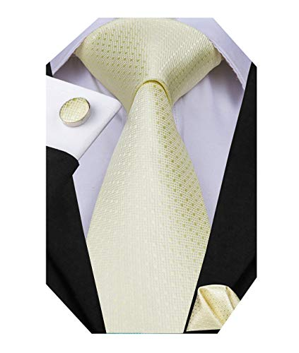 Dubulle Mens Champagne Silk Necktie and Hanky Cufflinks Set Tie with Pocket Square for Wedding