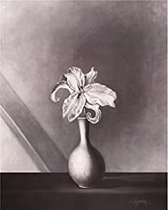 high quality polyster Canvas ,the Reproductions Art Decorative Prints on Canvas of oil painting 'Flower on Black-and-White Canvas Print', 8x10 inch / 20x25 cm is best for Hallway decoration and Home decoration and Gifts
