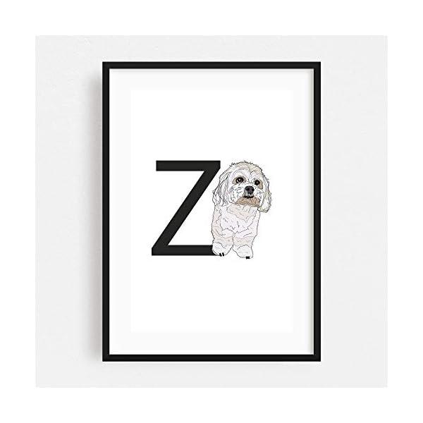 "Noir Gallery Dog Zuchon Illustration 11"" x 14"" Unframed Art Print/Poster 2"