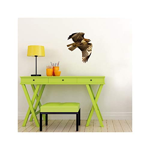 Red Tailed Hawk Wall Decal - 12.6