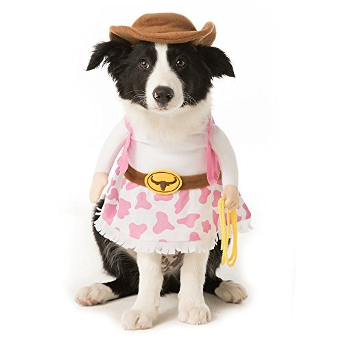Cat Halloween Costumes Petsmart (Thrills & Chills Pet Halloween Stand Up Cowgirl Pet Costume~SMALL~)