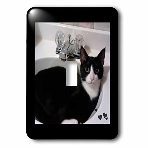 Charlyn Woodruff - CW Designs - Cat Photography - Cute Black White Tux Cat Curled up in Sink Photo - Light Switch Covers - single toggle switch (lsp_242428_1) by 3dRose