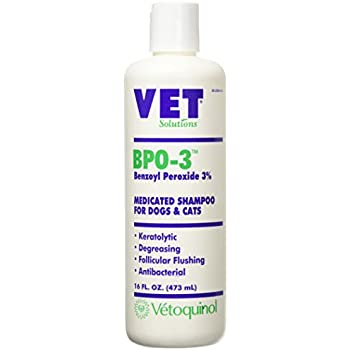 Pet Shampoos : Amazon.com: Vet Solutions Bpo-3 Shampoo 16 Oz.