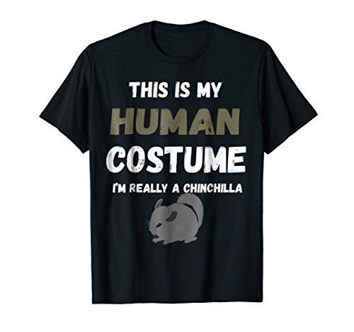 Chinchilla Halloween Costumes (This is my Human Costume I'm really a Chinchilla)