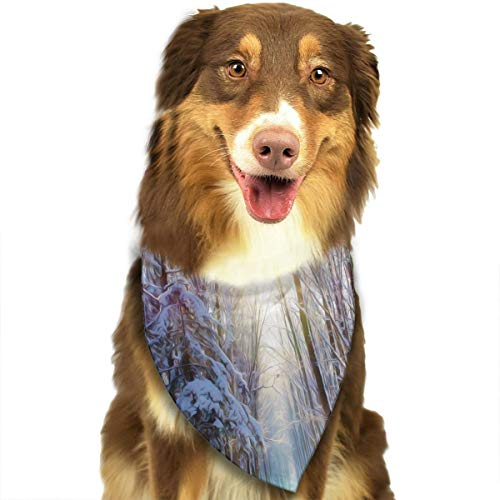 (Pet Scarf Dog Bandana Bibs Triangle Head Scarfs Sunrise Snow Forest Accessories for Cats Baby)