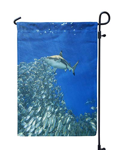 KJONG Marine-Life Garden Flag,12x18 inch Seasonal Flag Reef Shark Swimming School Fish with Sunbeams Blue Water Sea Weatherproof Double Sided Outdoor Flags for Yard Patio House Decorations